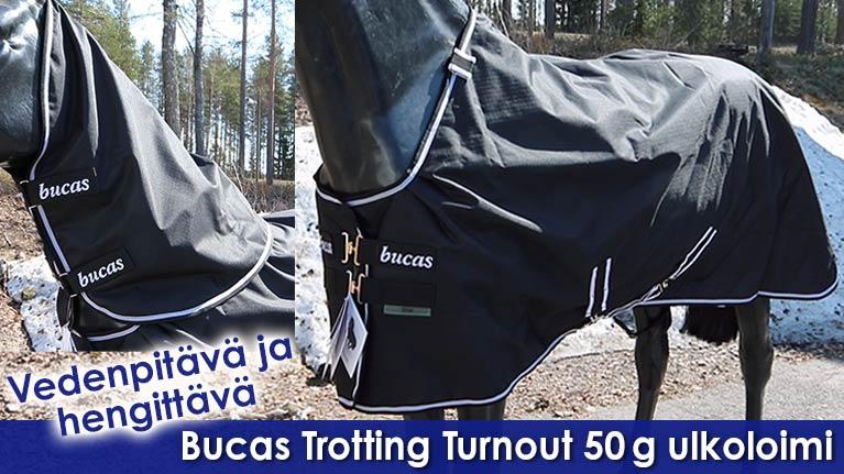 Bucas Trotting Turnout